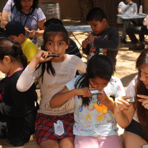 Children playing harmonicas